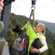 2-S.O.S.-Dog-Harness-Vest-in-Hi-Visibility